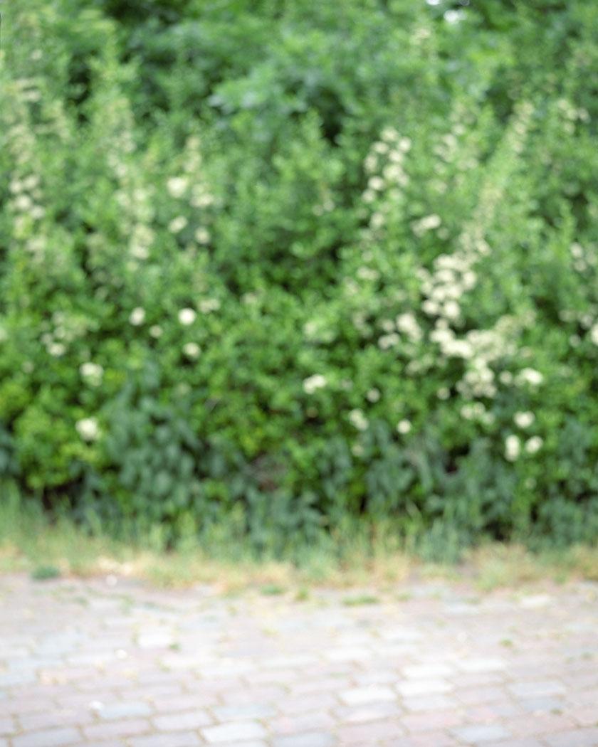 15_hi08.jpg